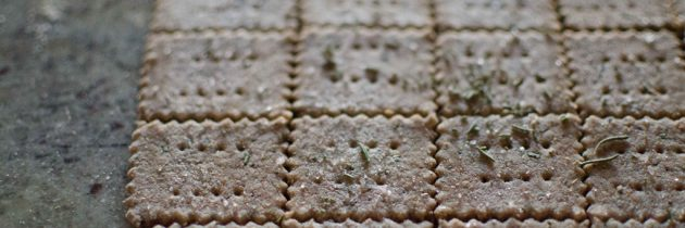 Whole Wheat Rosemary + Olive Oil Crackers